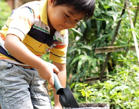 picture of a boy with a trowel in a garden
